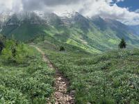Trail down from Big Baldy summit looking east toward Timpanogos