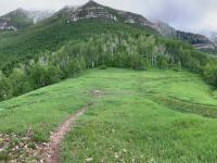 Saddle below Big Baldy and Timpanogos (erosion-control trench center-left)