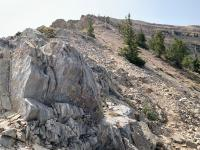 The last half-mile of trail to the peak is not as steep as the preceding half-mile, but is rocky and more exposed.